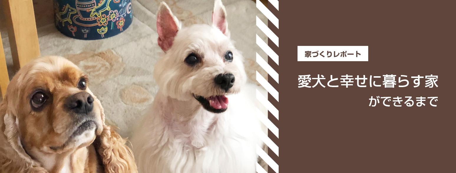 家づくりレポート - 愛犬と幸せに暮らす家ができるまで | Shoei彩工房